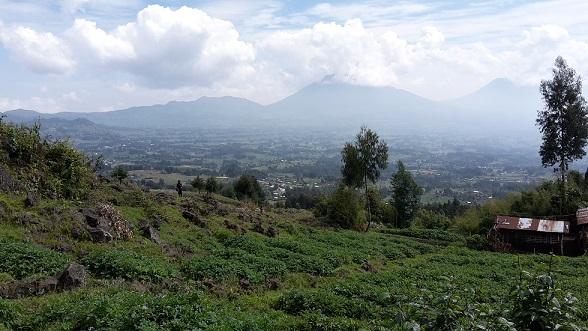 Knowledge transfer in Rwanda